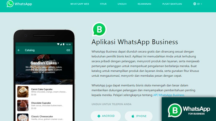 Cara Mudah Membuat Katalog di Aplikasi WhatsApp Bisnis. Foto: Tangkapanlayar/ Kolase: ketiktek.com