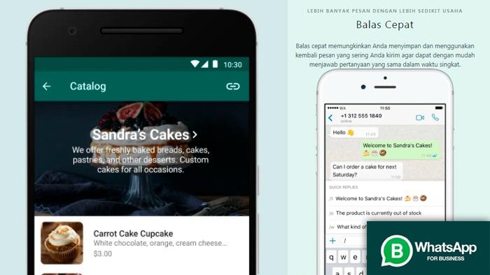Ini Cara Membagikan Produk dari Katalog WhatsApp Bisnis. Kolase: ketiktek.com